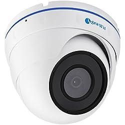 Sea Wit Starlight 1080P POE Dome IP Überwachungskamera Sony IMX291 CMOS Sensor mit voller Farbe Nachtsicht - Sehen Sie die Farbe der Nacht