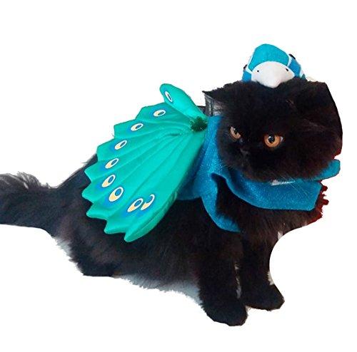 Stolz wie ein Pfau Katzen kleine Hunde Funny Kleid bis Blaugrün Grün Pfau Outfit Jumper Kostüm Outfit Jumper Kostüm Pullover