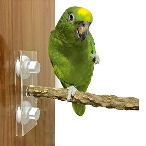 Bello Luna Legno Naturale Stand Giocattolo per Uccelli Pappagallo posatoi fissi su Vetro o Gabbia per Uccelli