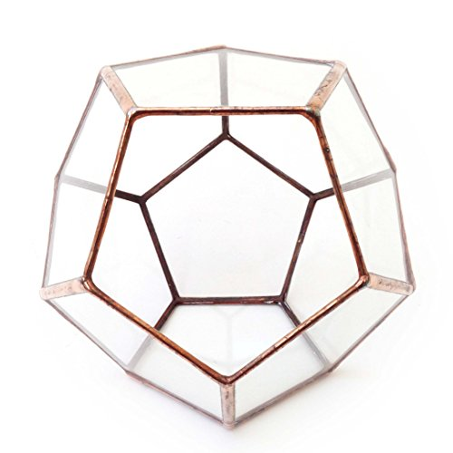 dodecahedron-small-geometric-glass-terrarium-handmade-glass-planter-modern-planter-for-indoor-garden