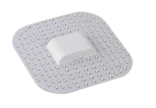 ZEYUN 2D 12W GR10q 4000K, 4-Pin LED Lampe, 2D-Kompakt-Leuchtstofflampe, DD Lampe, mit GR10q sockel (Pin-leuchtstofflampen-sockel)