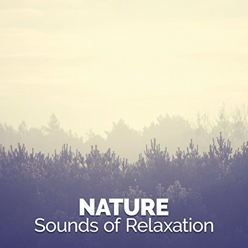 nature-sounds-of-relaxation