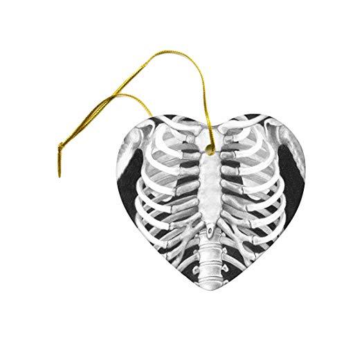 Tiukiu Artist Original Art Print of Rib Cage Anatomy Study Bones On A Ceramic Hanging Heart Ornament Rib Side Box