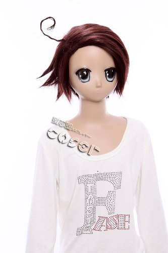 W 19 APH Axis Power Hetalia Korea Kawaii Cosplay Wig Heat Resistant Brown Story