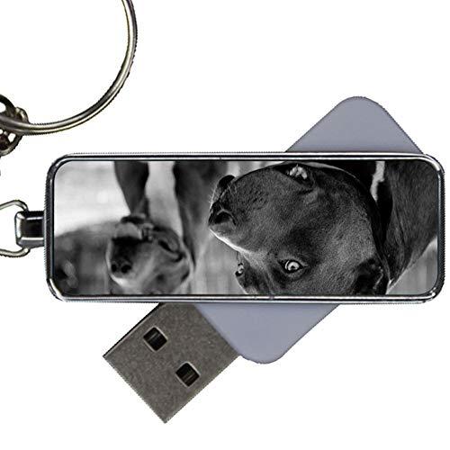 Metall Mode Mit Pit Bull Girls Zum 8Gb USB Flash
