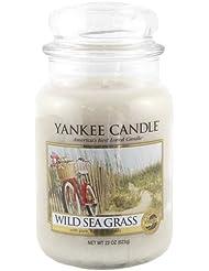 Yankee Candle 1324484 Bougie senteur Wild sea grass en jarre Beige L