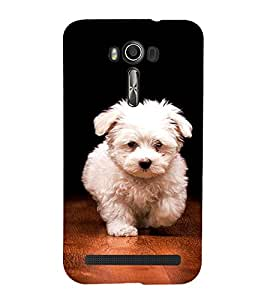 CUTE PUPPY Designer Back Case Cover for Asus Zenfone 2 Laser ZE550KL::Asus Zenfone 2 Laser ZE550KL (5.5 Inches)