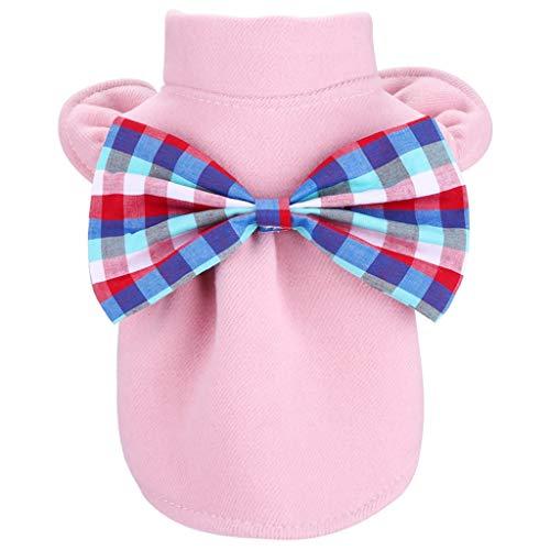 DingDing Pet Kleidung, Teddybär Hund Katze Kostüm Herbst Und Winter Prinzessin Nizi Rock (Farbe : A, größe : - Prinzessin Winter Kostüm