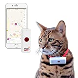GPS pour chat Weenect Cats 2