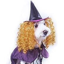 Vivi Bear Dog Costume da Strega Mantello Pet Cappello con attività Gold  peli Ricci Confortevole per 8b57c4b40d61