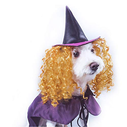 (Vivi Bear Dog Witch Cloak Pet Costume Hat With Gold Curly Hairs Comfortable for Party Activity, Halloween, Christmas Holidays)