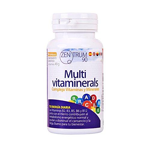 Vit Eisen (Vitamin-Komplex mit Mineralien, Vitamin C, Vit B2, B3, B5, B6 und B12 und Eisen - Multivitamin zur Bekämpfung von Müdigkeit, Müdigkeit und Steigerung des Wohlbefindens Ihres Körpers (90 Kapseln))