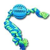 WEPO Hundespielzeug l Robuster Schleuderball mit Noppen aus Naturkautschuk (Naturgummi) zur Dentalpflege l Kauball inkl. Strick l Hunde Welpen l strapazierfähiger Wurfball Snackball (7cm, Blau-Grün)