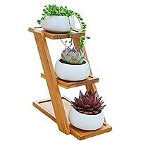 Smater Set di 3moderno bianco in ceramica Piante Vasi/Mini fiori Contenitori per piante con ripiano