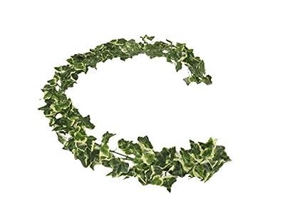 A-Deko Efeugirlande mit 185 Blätter von A-Deko auf Du und dein Garten
