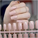 VIKSON INTERNATIONAL Gorgeous Nude Long French tip Artificial Art Design False Nails 24 pcs with nail glue