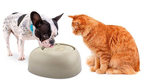 Imac Ciottou Trinkbrunnen 2L für kleine Hunde und Katzen