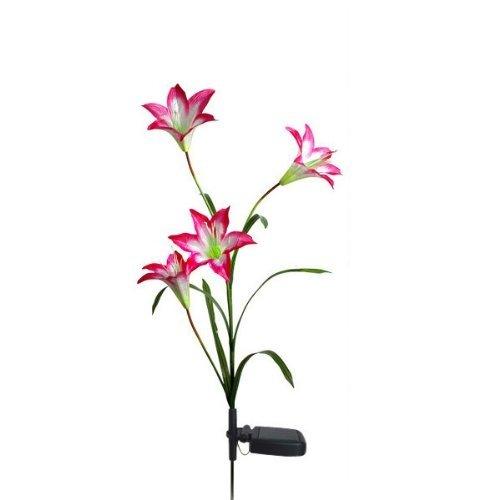 FRE Solarleuchten 4 Kopf Lilien Blumen LED Licht Lampen Garten Rasen Decor – Rot - 4
