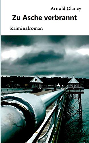 Image of Zu Asche verbrannt: Kriminalroman (Dömitz/Elbe Krimis)
