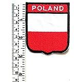generisch Freundschaftspin pins Deutschland Polen Fahne Anstecker Button Metall NEU