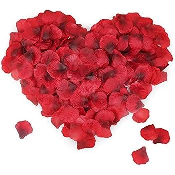 Haobase Lot de 1000 p/étales de Rose en Soie Rouge