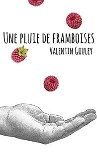 Une pluie de framboises par Valentin Gouley