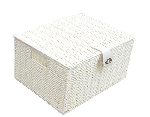 Arpan Large Resin Woven Storage Basket Box with Lid & Lock - White Woven Storage-boxen