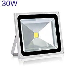 Roleadro Led Faretto Faro Esterno 30w Flood Light IP65 Impermeabile per Illuminazione in Casa Giardino Bianco Freddo 6500K
