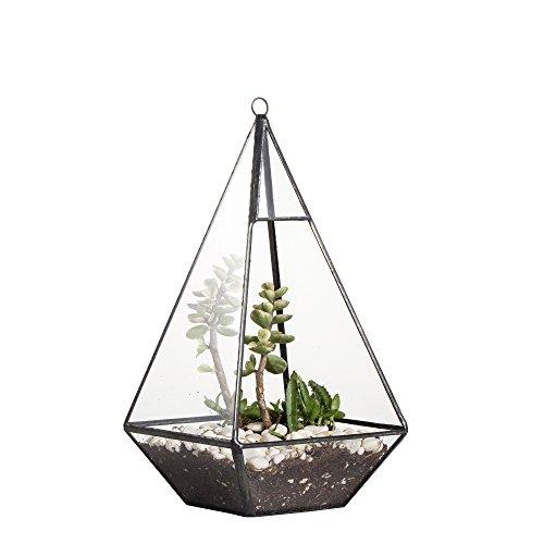 Moderner Blumentopf, mit Deckenhalterung zum Basteln, Pyramidenform, Glas, geometrisch, für Sukkulenten, Deko, Farn, Moos, 24 cm -