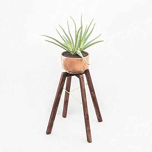 Soporte para plantas de madera vintage. Accesorios jardinería interior