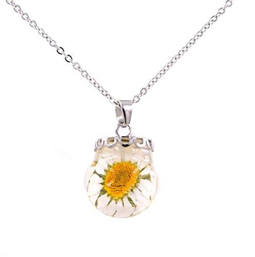 Echter Blume Harz Kristall Ball Anhänger Halskette–Daisy–45,7cm (in Organza - Daisy Blume-bälle