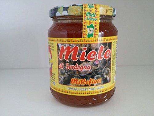 miel-de-millefiori-produit-en-sardaigne-rserve-naturelle-monte-arcosu-250g
