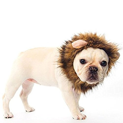 Ducomi® Simba - von Mane Lion King für Hunde und Katzen in weiches Haar Ecological mit Ohren - Machen Sie die Perücke, um Ihren Hund und Ihre Katze Trägt (L, Braun) (Katze Trägt Löwen Kostüm)