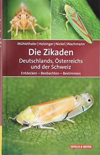 Die Zikaden Deutschlands, Österreichs und der Schweiz: Entdecken - Beobachten - Bestimmen (Quelle & Meyer Bestimmungsbücher) (Lebenszyklus Der Pflanzen)
