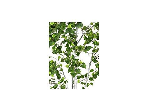 Europalms Birkenbaum im Gärtnertopf, 210cm, Kunstbaum, 1102 Blätter - 2
