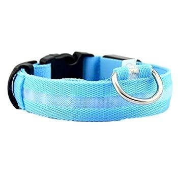 collier chien Angelof Collier PET de sécurité pour collier lumineux en nylon à LED solide (M, Bleu)