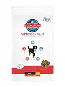 Hill's - Hills Science Plan VetEssentials Canine Adult Large Breed Contenances : 13 kg