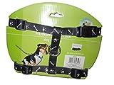 TOP STAR. HNO Hundegeschirr, Nylon, Knochen und Pfoten, 20 mm x 35 x 50 cm, sehr robust und leicht, 80 g