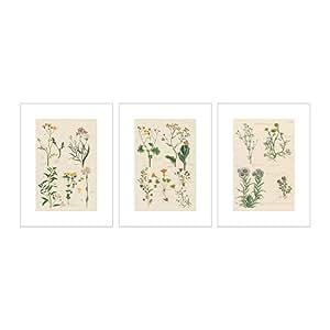 IKEA TRILLING - Poster, 3, fleurs sauvages - 30x40 cm