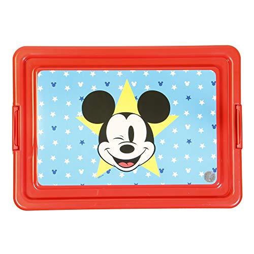 Conteneur 13 L | Mickey All Star ECI