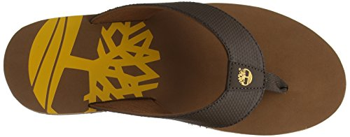Timberland Wild Dunes, Infradito Uomo, Marrone (Chocolate Brown with ARG An Oil 243), 41.5 EU