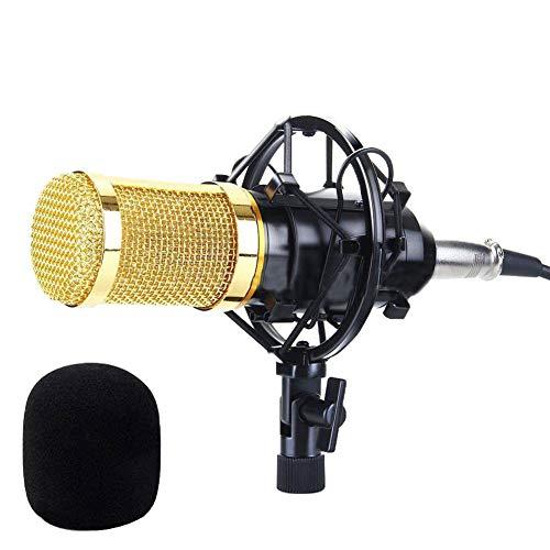 Yeshai3369 Podcast-Mikrofon, Audio-Mikrofon, Metallgeflecht, Studio-Soundaufnahme, Kondensatormikrofon für zu Hause KTV Computer