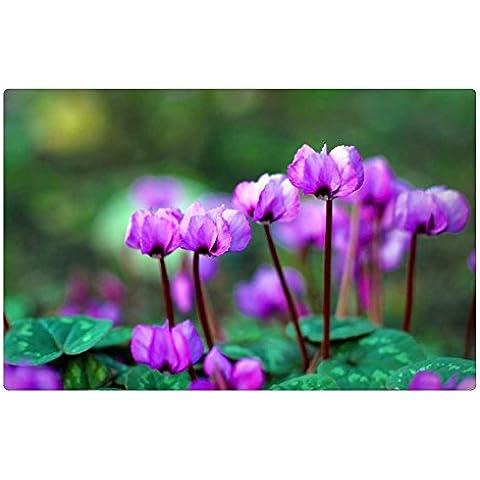 IRocket Tappetino Pavimento/Tappeto da Interni, colore: viola, in primavera (59,9x 39,9cm 60cm x 40cm)