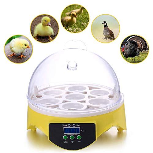 Incubatrice di uova 7 uova digitale mini automatico cova per pollo anatra uccello uova, spina ue