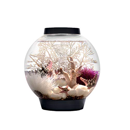 Baby biOrb Kugel Aquarium 15 l – Schwarz – Design Komplett Aquarium 15 Liter