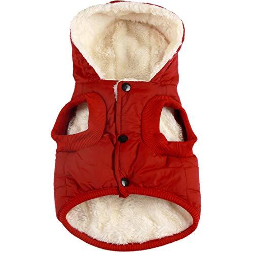 JoyDaog(Warm Forro Polar + Forro de algodón para Perro Sudadera con Capucha en Invierno, Chaqueta para Perro pequeño Abrigo para Cachorros con Capucha