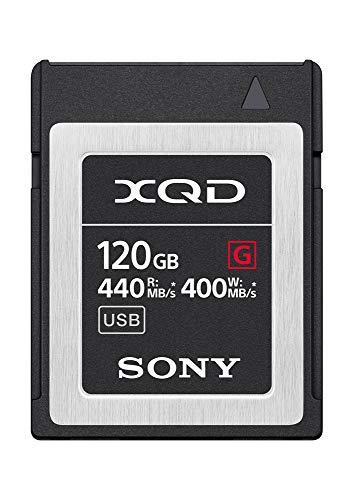Sony Qdg120F 120Go Carte mémoire Flash