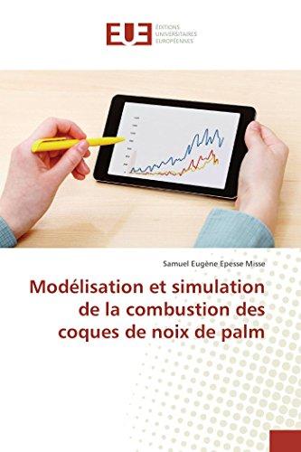 Modélisation et simulation de la combustion des coques de noix de palm par Samuel Eugène Epesse Misse
