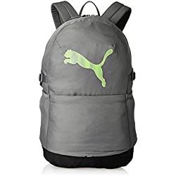 Puma 21 Ltrs Grey Casual Backpack (7511802)