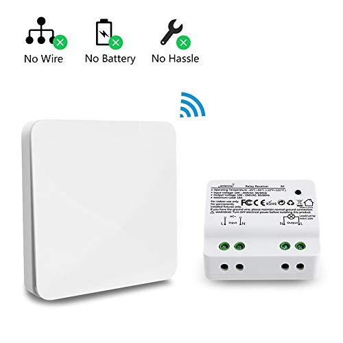 AUTOECHO Smart Wireless Lichtschalter Kit Control Receiver Outdoor ohne Batterie ohne Probleme Lichtschalter Innen Funkfrequenz-Technologie für Deckenbeleuchtung Reißverschluss Controller - Wireless Control Kit